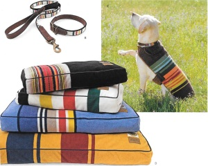 And don't forget to pamper your pet with the same Western style!